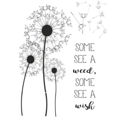 Some see weed, Some see a wish